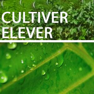 CULTIVER des plantations naturellement résistantes - ÉLEVER des animaux sains en bonne vitalité